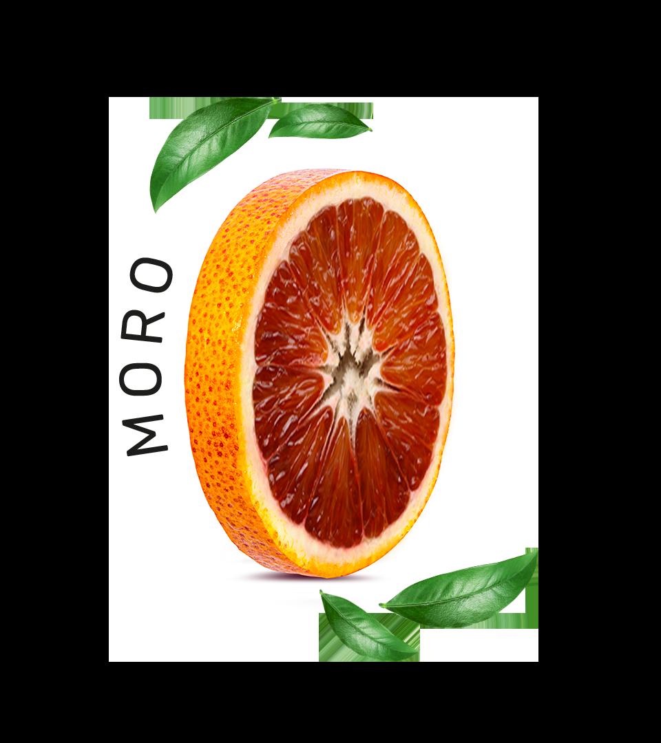 Moro_4