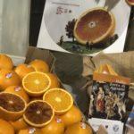 Agrumi: Colori, profumi, sapori della cultura Mediterranea