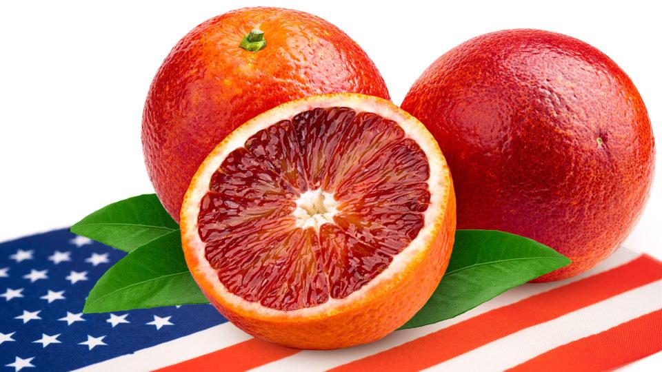 L'Esportazione delle Arance Rosse di Sicilia IGP negli USA