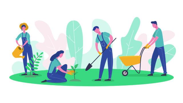 Bagheria – nuove strategie di marketing territoriale, politiche di sviluppo ed evoluzione del mercato degli agrumi